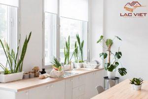 Không gian tràn ngập cây xanh là nguồn cảm hứng tuyệt vời cho căn bếp
