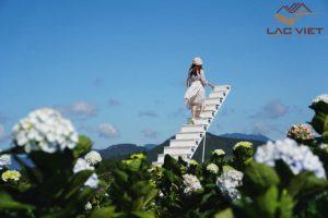 Đà Lạt - thành phố cung cấp hoa tươi và rau sạch cho khắp cả nước